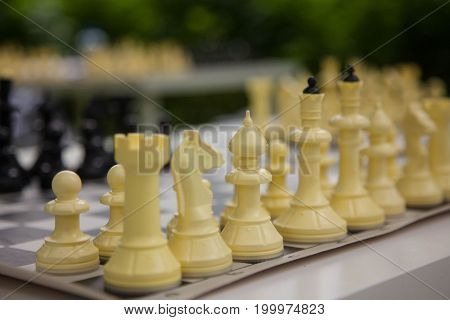 a game of chess in the Park on a green background