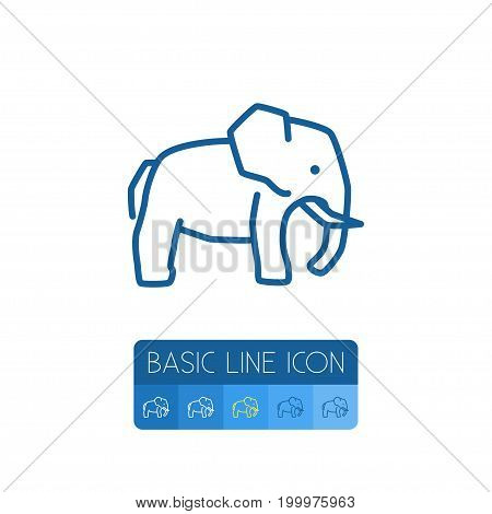 Trunked Animal Vector Element Can Be Used For Elephant, Trunked, Animal Design Concept.  Isolated Indian Elephant Outline.