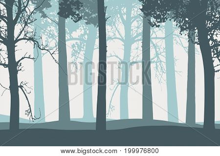 Vector illustration of tree trunks with branches in a foggy forest