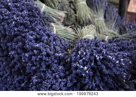 Bouquets of lavender on a market stall in Sault in the Haute-Provence
