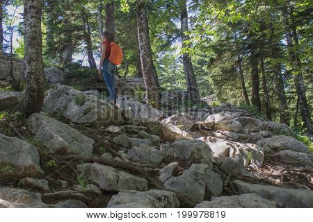 Active and healthy lifestyle on summer vacation and weekend tour. Tourists hitching a ride. Travel adventure and hiking activity. Traveler travel In the mountains reserve