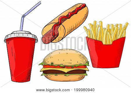 Fast food set - hamburger, hot dog, french fried, drink. Hand drawn colored sketch. Vector illustration isolated on white background