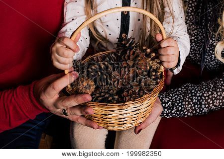 Christmas New Year Composition With Girl Holding Pine Cones Basket