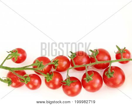 branch of fresh red tomatoes Solanum lycopersicum isolated on the white