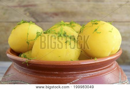 Boiled potatoes are in a pot. Potatoes are traditional food