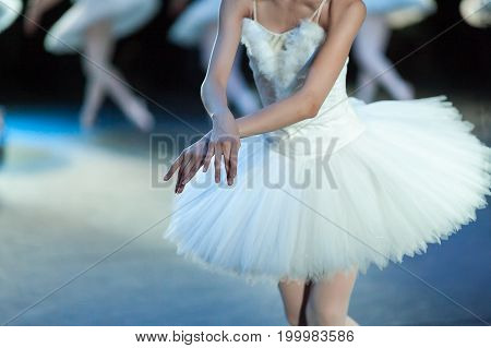 tenderness, ballet, choreography concept. svelte caucasian ballerina dressed in the costume of magnificent swan putting her thin delicate hands together like the wings