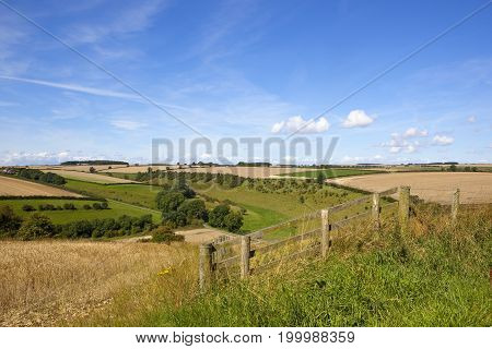 Wooded Scenic Valley With Fence