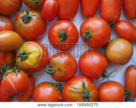 Tomato Vegetables Food