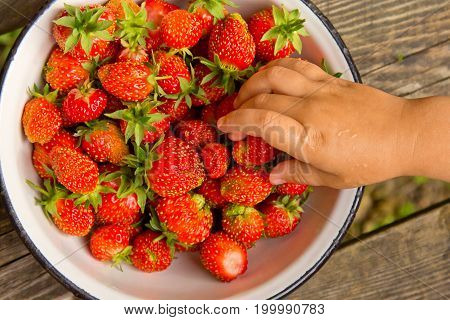 Baby hand taking strawberries from a plate