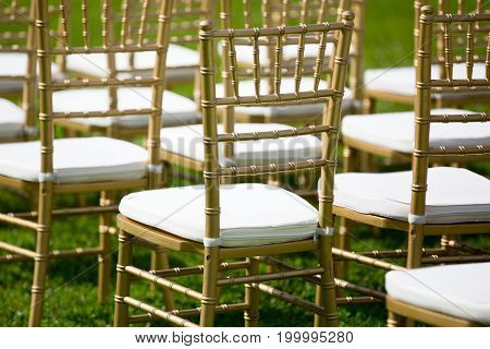 gold and white Chairs for wedding ceremony on the grass