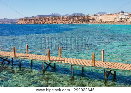 Sunny resort beach with palm tree at the coast of Red Sea in Sharm el Sheikh, Sinai, Egypt, Asia in summer hot. ?oral reef and crystal clear water. Famous tourist destination diving and snorkeling poster