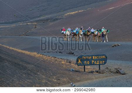 Lanzarote, Spain - April 26, 2019: Tourists Having Camel Rides At The Famous Timanfaya National Park