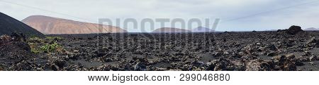 Panorama Picture Of The Volcanic Landscape Of Lanzarote Around Timanfaya