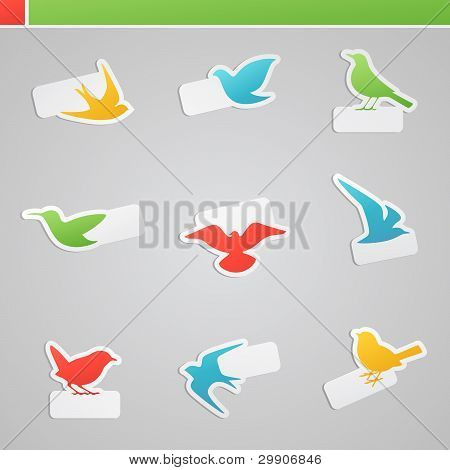 Set Of Multicolored Birds With Tags.