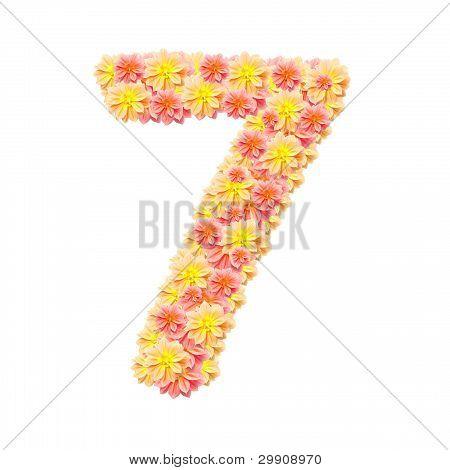 7,flower Alphabet Isolated On White