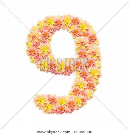 9,flower Alphabet Isolated On White
