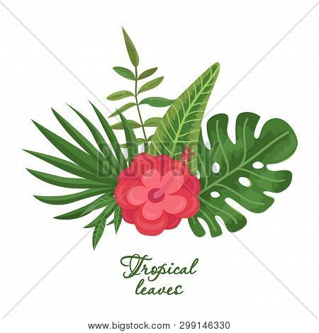 Bright Bouquet Of Tropical Leaves And Flower