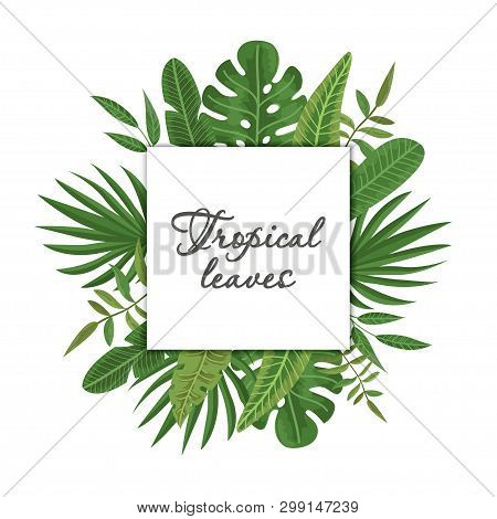 Bright Wreath Of Tropical Leaves And Flowers