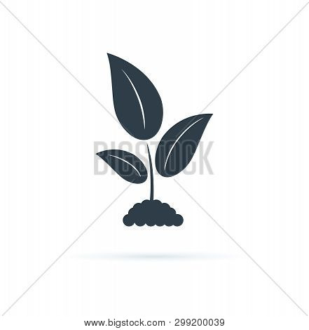 Plant Icon. Vector Icon Illustration. Agriculture Symbol, Biology Cultivation Sign, Garden Plant. Na