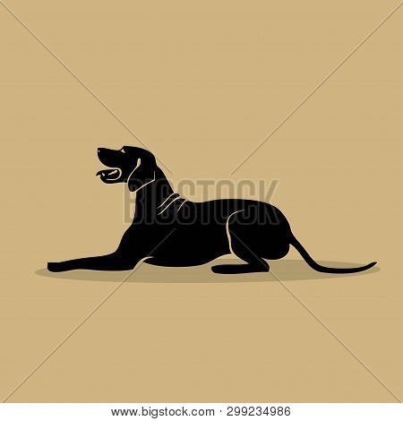 Rhodesian Ridgeback Dog - Isolated Vector Illustration - Vector