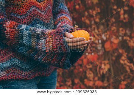 Woman Wearing Warm Woolen Sweater In Bohemian Style Holding In Hands A Small Orange Pumpkin. In The