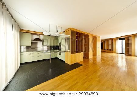 beautiful apartment, interior, view of the kitchen