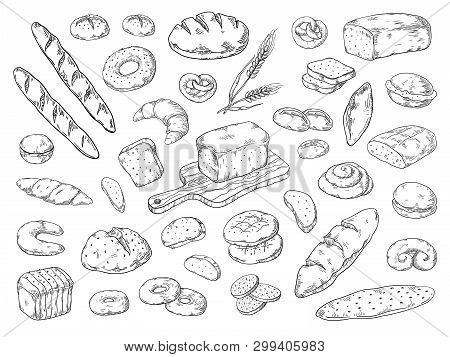 Hand Drawn Bakery. Doodle Bread Sketch, Wheat Flour Types Of Bread, Vintage Graphic Template Baking.
