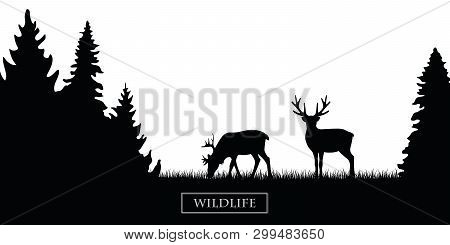 Two Wildlife Reindeer Silhouette In The Forest On The Meadow Black And White Vector Illustration Eps