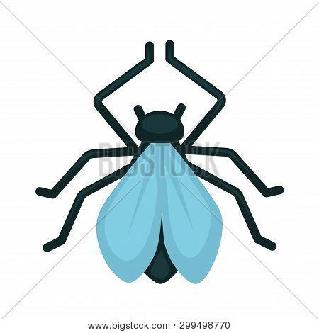 Blue-winged Wasp Isolated On White Close Up  Illustration