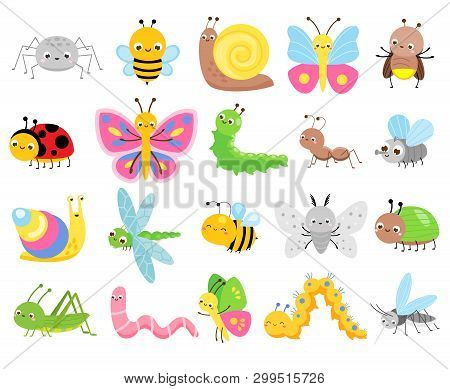 Cute Insects. Big Set Of Cartoon Insects For Kids And Children. Butterflies, Snail, Spider, Moth And