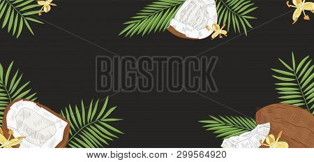 Elegant Horizontal Background With Coconuts, Palm Tree Leaves And Flowers On Black Background. Backd