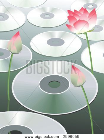 Discs And Lotus