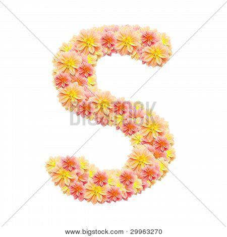 S,flower Alphabet Isolated On White