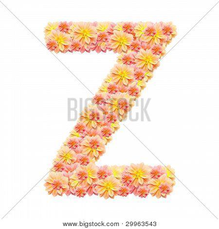 Z,flower Alphabet Isolated On White
