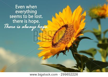 Inspirational Motivational Quote- Even When Everything  Seems To Be Lost, There Is Hope. There Is Al