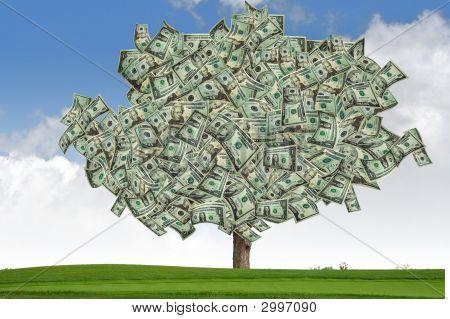 Marketing Money Tree