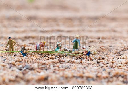 Miniature People : Farmer Working Plot In The Desert