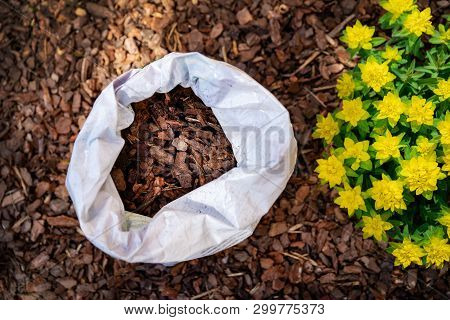 Mulching Flower Bed With Pine Tree Bark Mulch