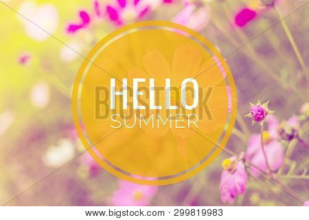 Hello Summer Banner. Text On The Photo. Text Hello Summer. New Month. New Season. Summer. Text On A