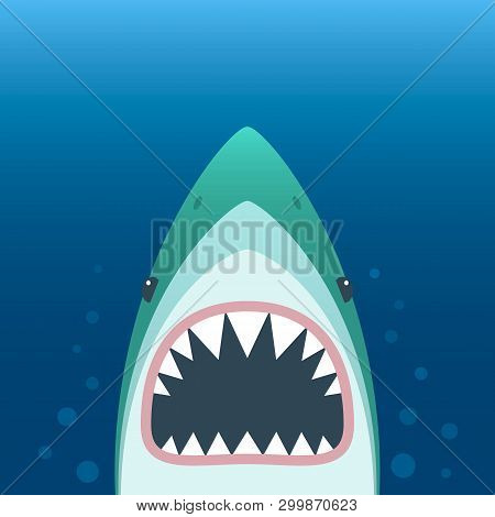 Shark With Open Mouth. Shark Isolation On A White Background. Flat Vector