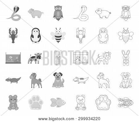 An Unrealistic Mono, Outline Animal Icons In Set Collection For Design. Toy Animals Vector Symbol St