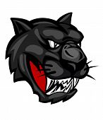 Wild panther head isolated on white background for mascot design poster