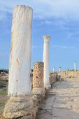 Spectacular Corinthian columns belonging to famous Salamis Gymnasium taken on a sunny day with blue sky above. Salamis was an ancient Greek city-state located in todays Turkish Northern Cyprus poster