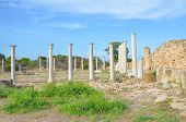 Amazing view of well preserved ruins of ancient Greek city Salamis in Northern Cyprus. The Corinthian columns were part of Salamis Gymnasium. One of the most popular Cypriot tourist attractions poster