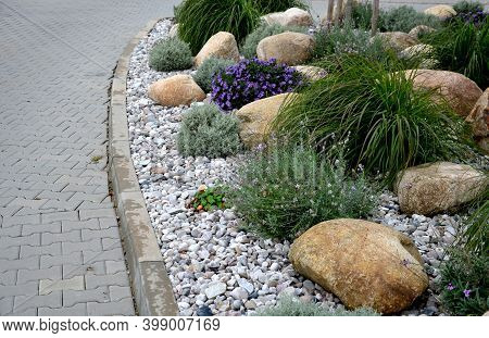 Ornamental Flower Bed With Perennial Pine And Gray Granite Boulders, Mulched Bark And Pebbles In An