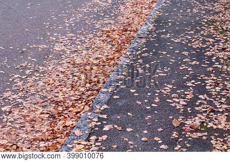 Dry Brown Fallen Leaves Lying On A Tarmac Sidewalk In Autumn