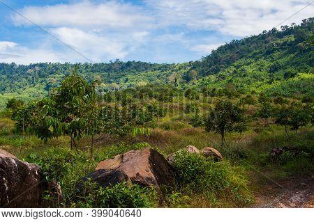 Beautiful Natural View At Khlong Yai Province, Thailand.