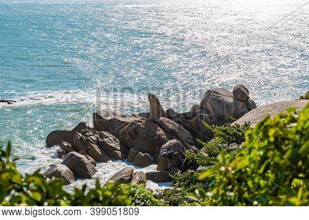 Natural Landmark Of Samui Island In Thailand, Phallus-shaped Rock, Rock Called Grandparents Hin Ta H