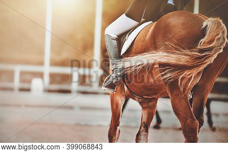 On A Sorrel Horse With A Long Curly Tail, A Rider Sits In The Saddle, Illuminated By Sunlight. Eques