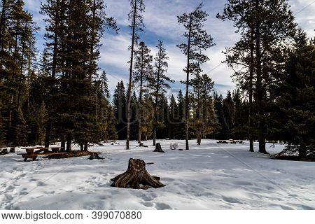 In The Throws Of Winter. Bragg Creek Provincial Park. Alberta, Canada